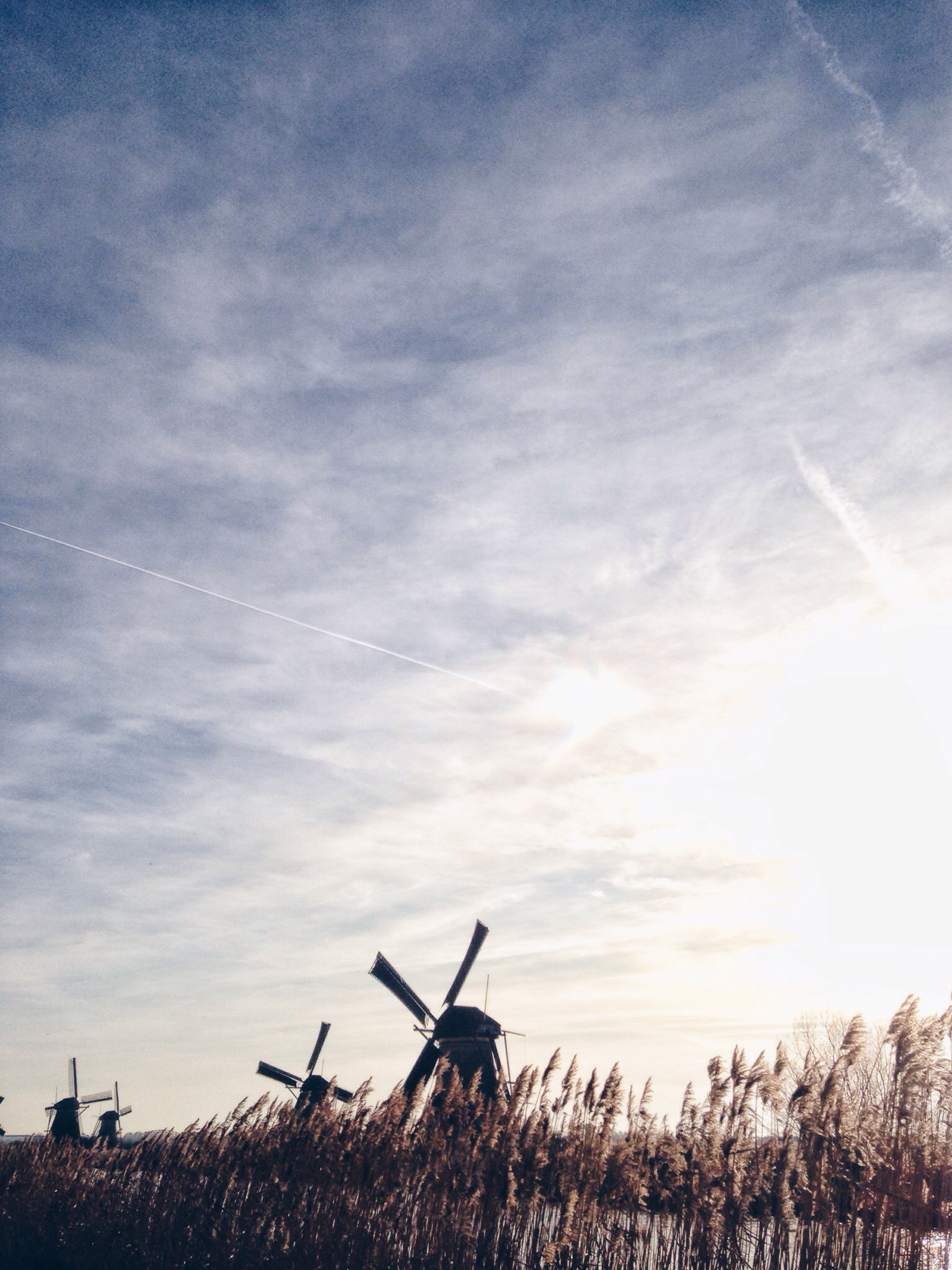 Windmills in The Netherlands, Anna Egorova