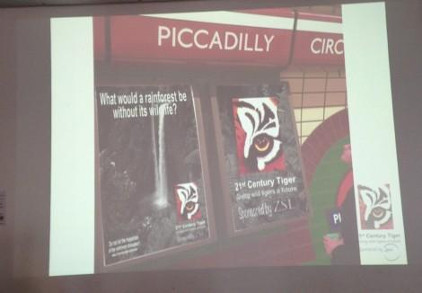 'Tiger Champions' campaign mock-ups presented.