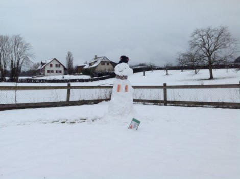 Salmon Booby Snowman, Still from 12 second video clip, 2015.