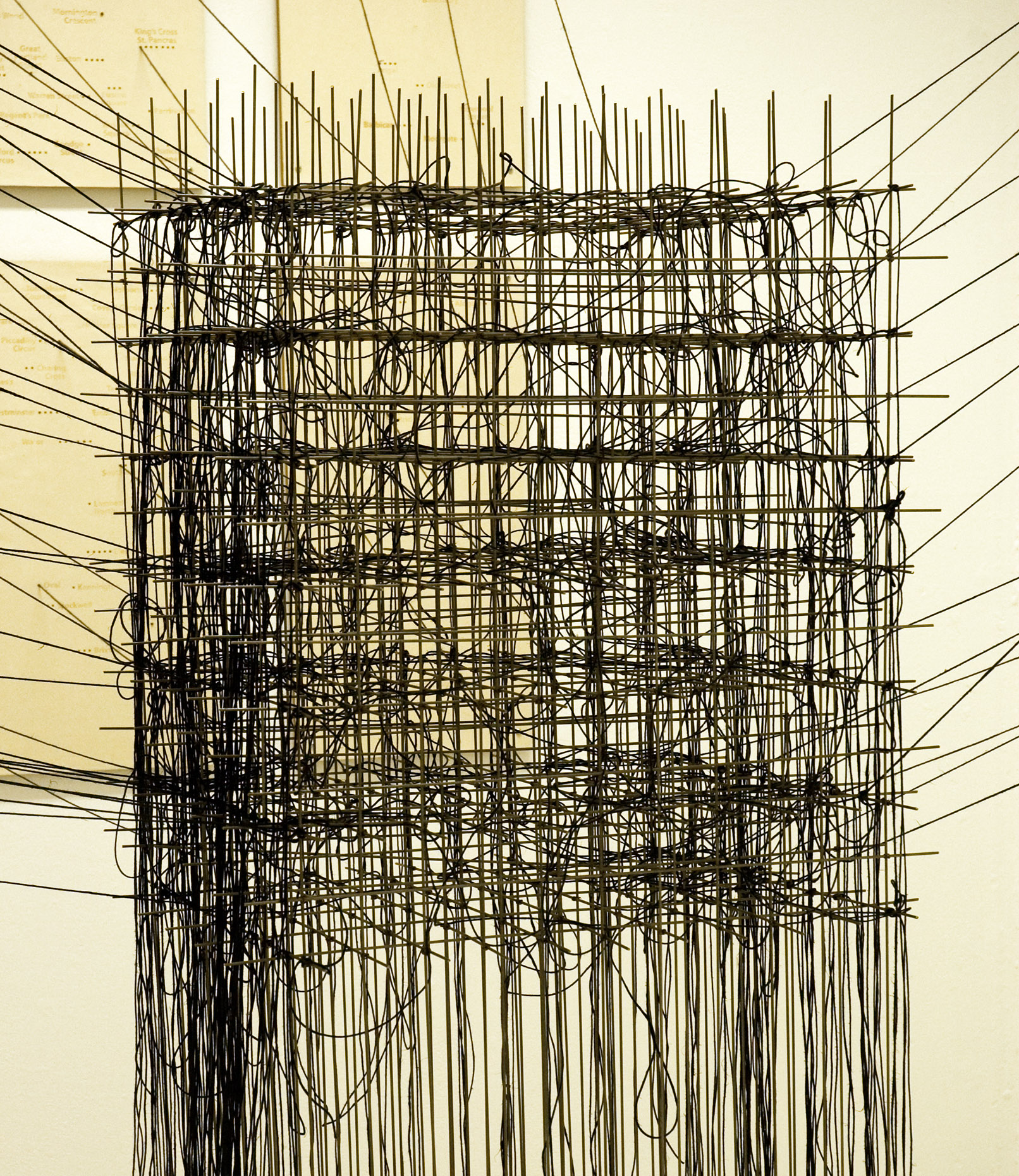 String And Wire Woven Architectural Structure