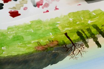 Watercolour Painting 1 - Beginners