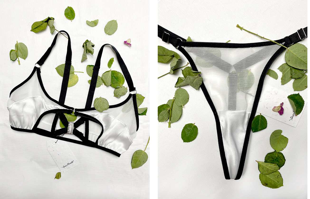 Photo of lingerie on white background surrounded by green leaves