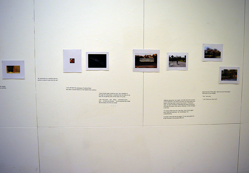Sophy Rickett, 'The Curious Moaning of Kenfig Burrows' 2016, black and white bromide prints, C-type prints, vinyl wall-mounted text