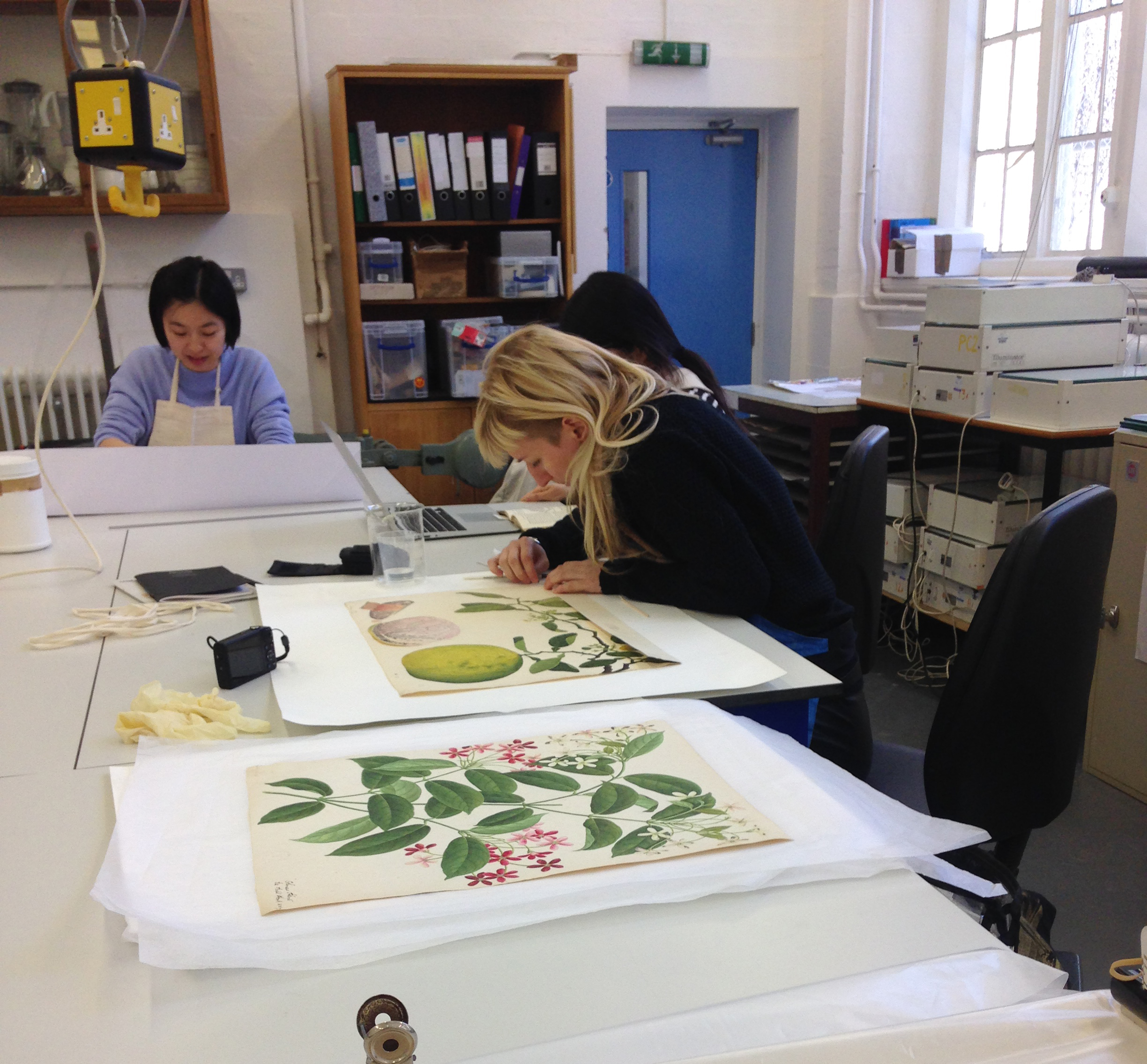 MA Conservation students working on pieces from The Royal Botanical Gardens, Kew