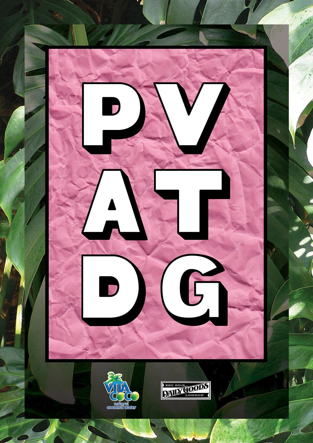PV at DG poster