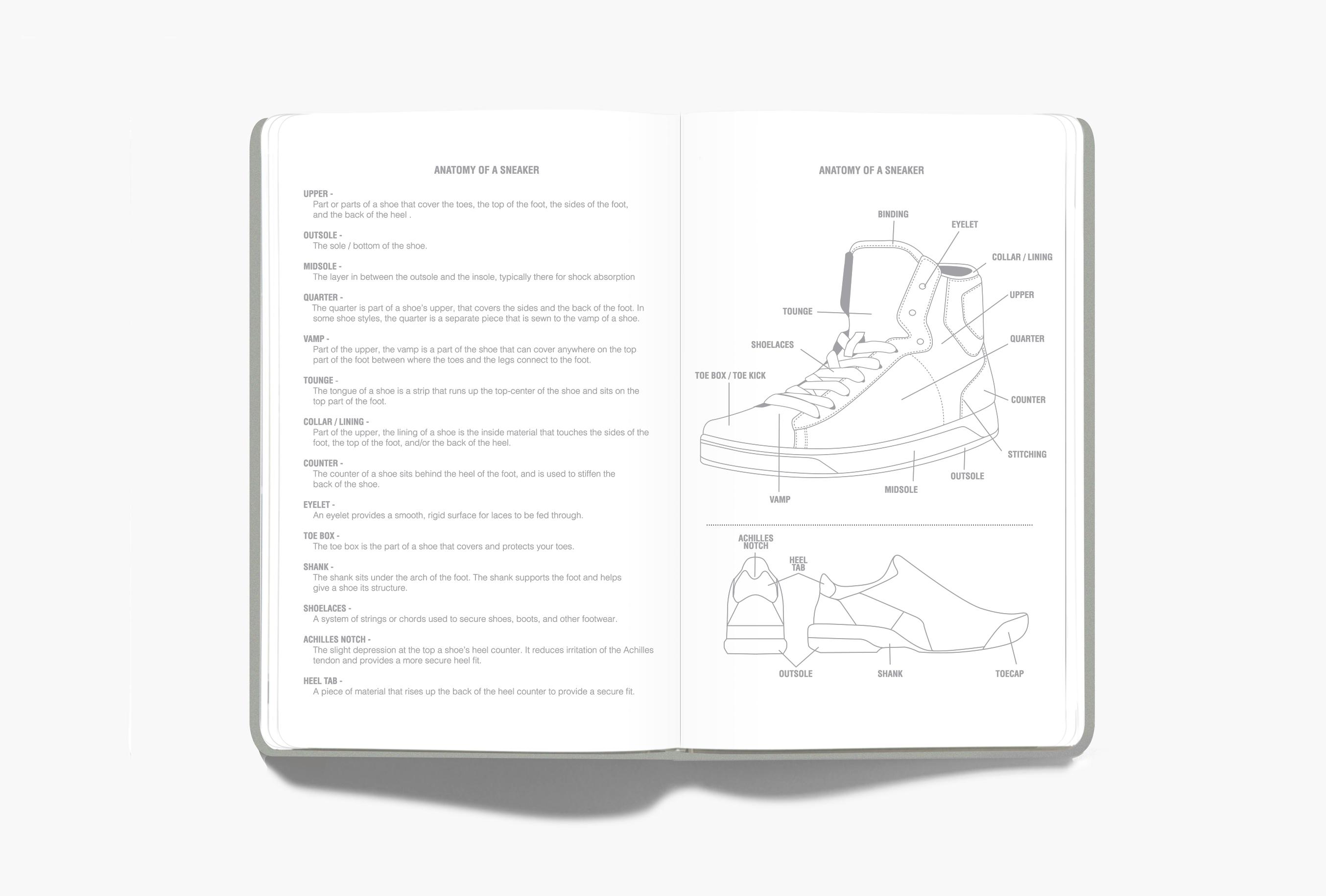 Sneaker_Palette_Anatomy