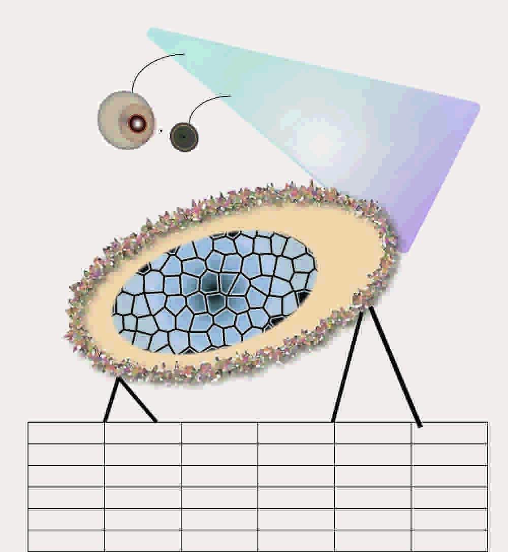 Abigail Butler, BA (Hons) Creative Direction for Fashion, FMP Illustration mock up.