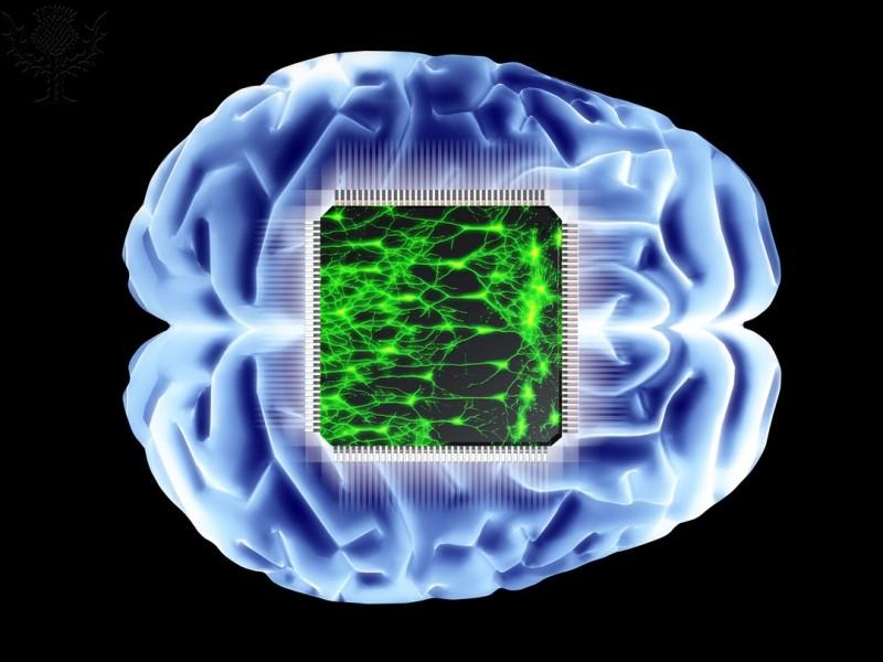 Brain and microchip