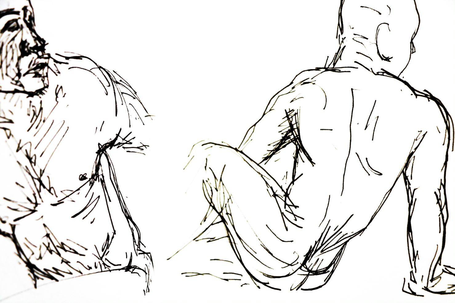 Anatomical Drawing - Intermediate