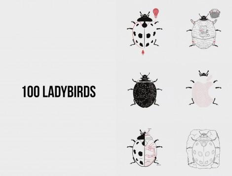 anabelle_jelena_ladybird_image.indd