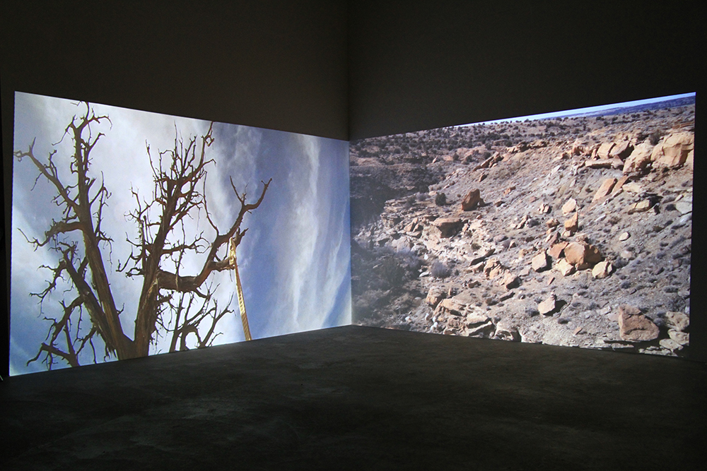 Black Mesa in situ © Camille Summers-Valli