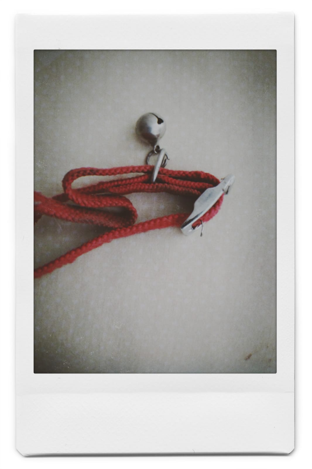 red cat's collar with bell