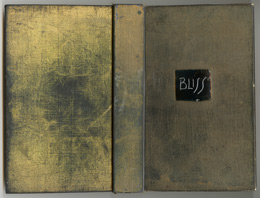 Bliss Book Cover © Estate of Derek Jarman courtesy K.Collins