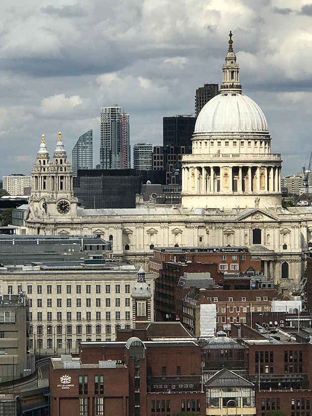 View of London with St Pauls Cathedral in the backdrop