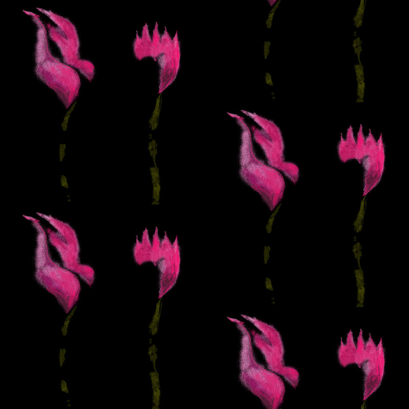 A repeated pattern design by Sue Bamford with pink tulips on a black background
