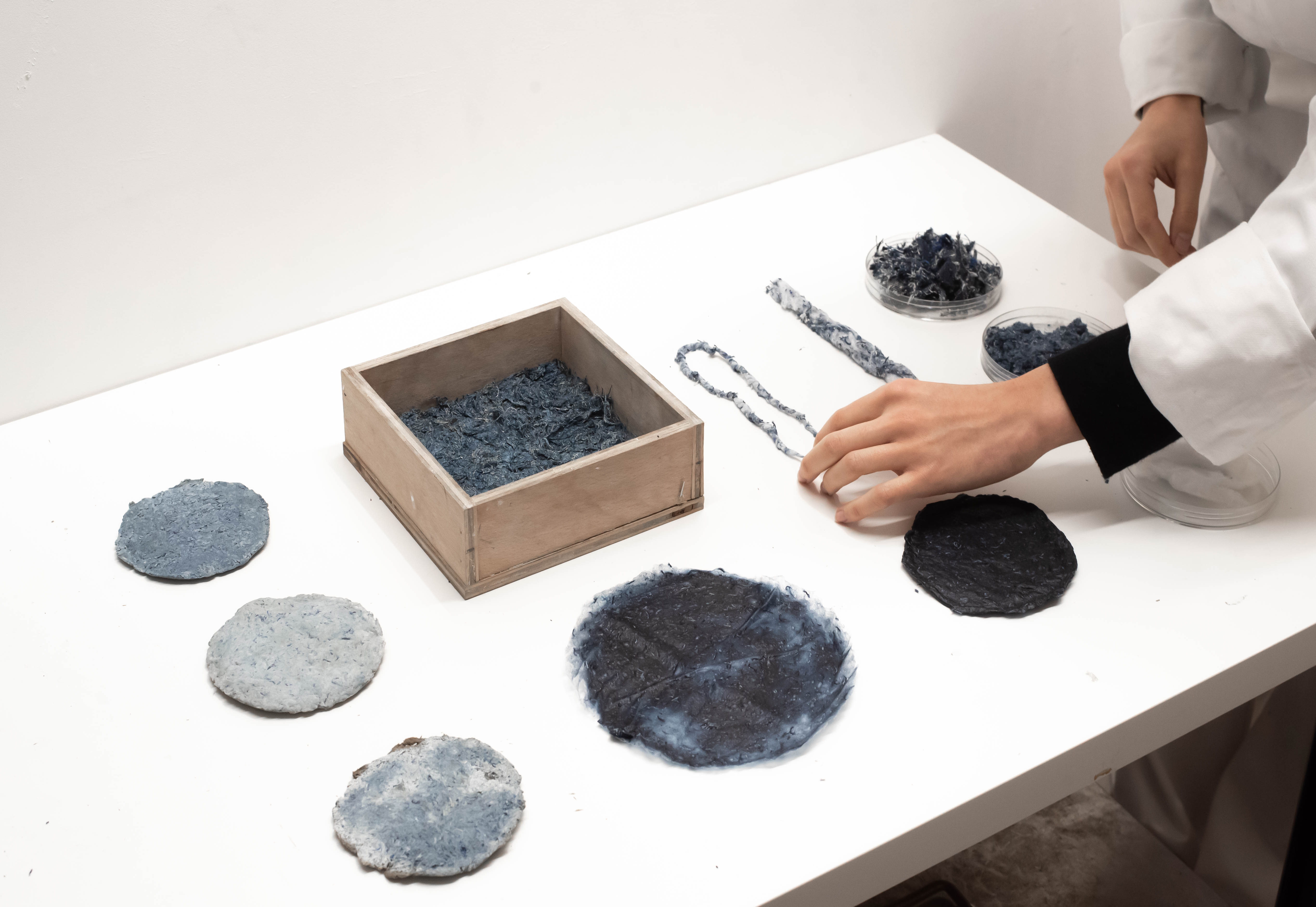 Circular coloured samples aligned on a laboratory table.