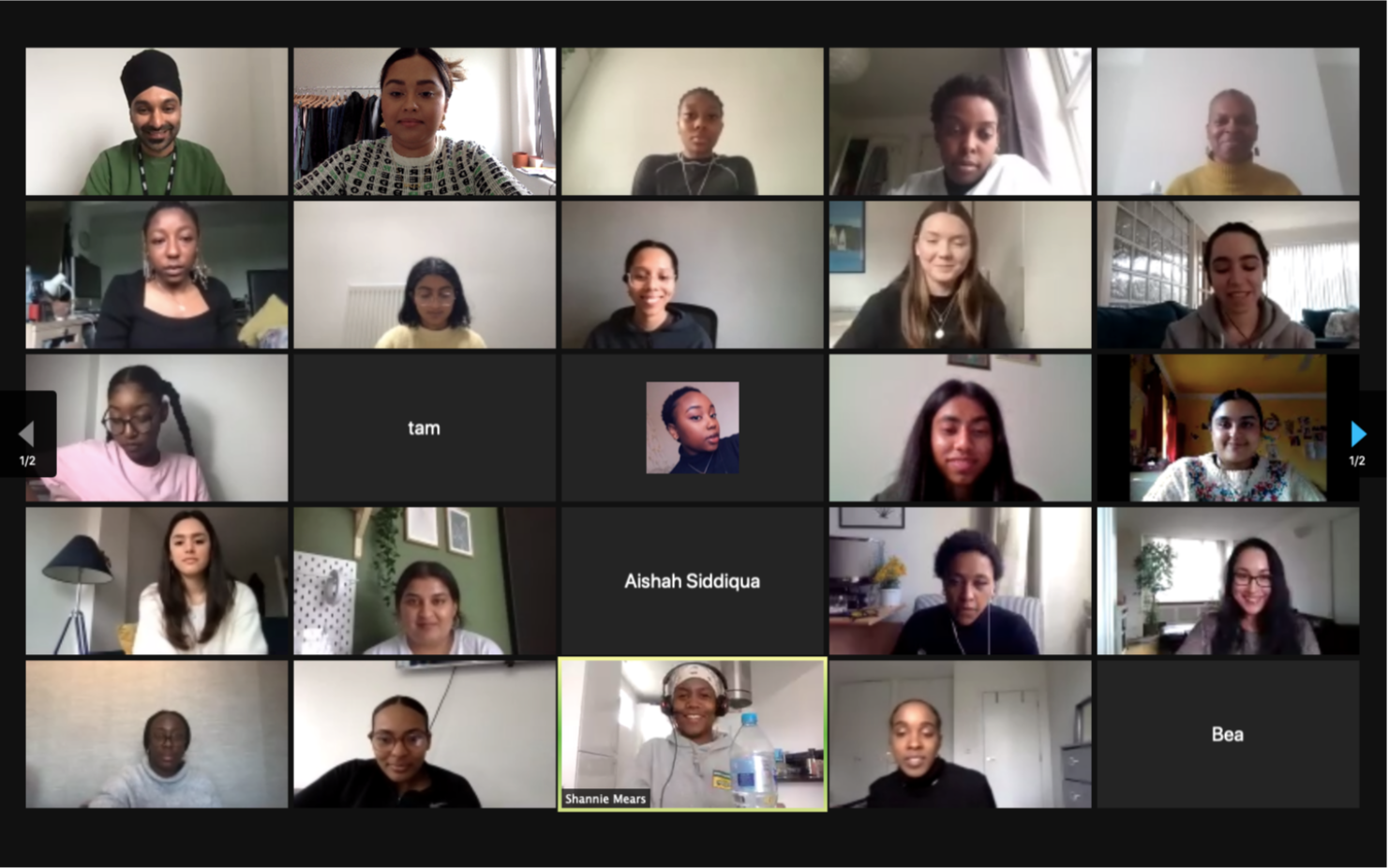 Screenshot of a zoom conference call