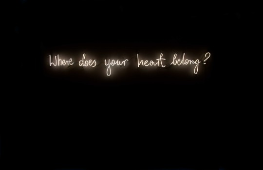 Where Does Your Heart Belong, from series the daily questions, 2014, neon. By Michal Martychowiec