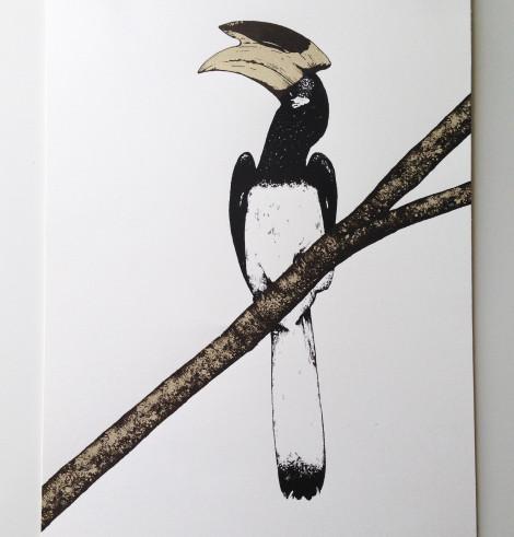 touican 2