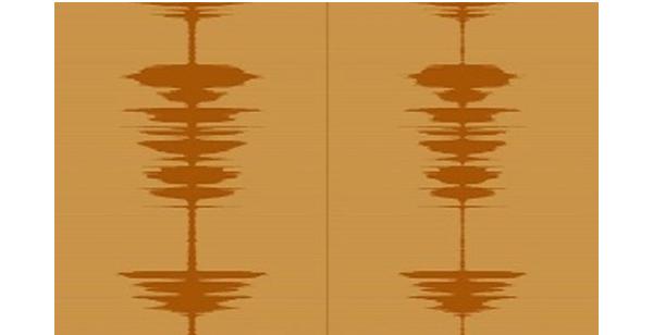 Alison Carlier's sound work