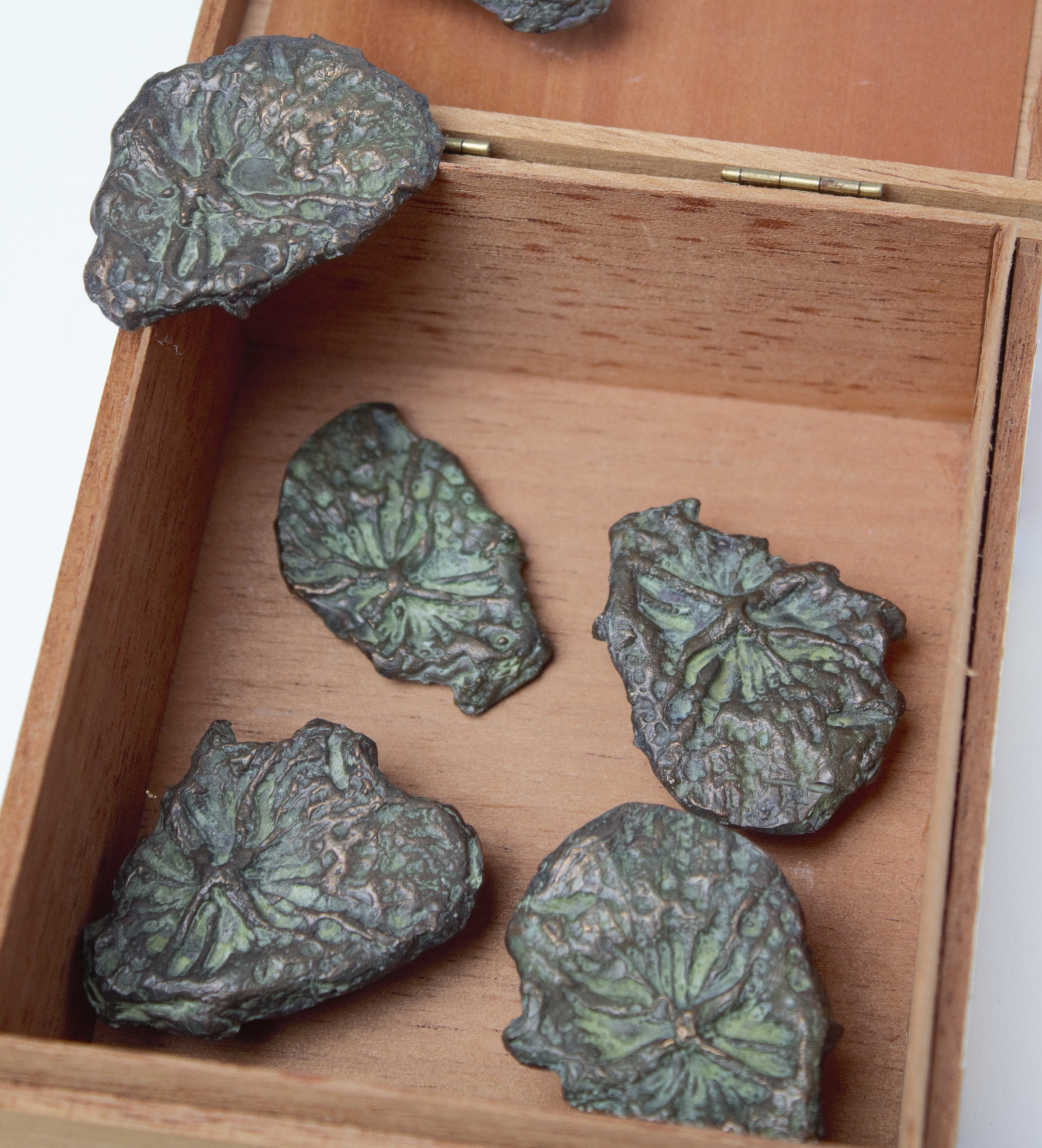 Moulds of dark green leaves placed in an open square box